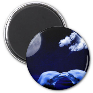 Midnight Dolphin Kiss Magnet