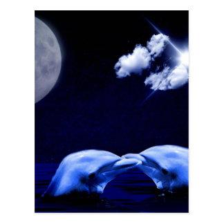 Midnight Dolphin Kiss Postcard