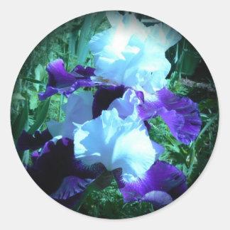 Midnight Moonlight Iris Classic Round Sticker