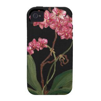 """Midnight Phalie"" i phone case iPhone 4 Cover"