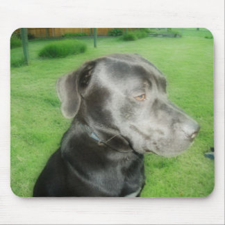Midnight Pose Orton Styled Photo Mouse Pad