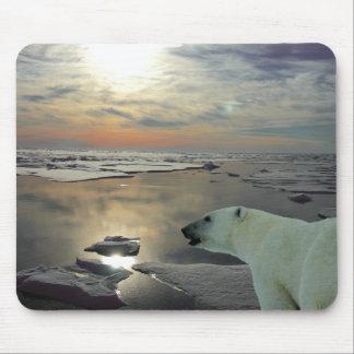 Midnight sun & polar bear, Arctic Ocean Mouse Pad