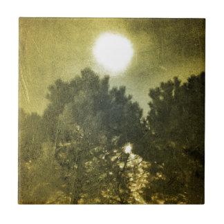 Midnight sun tile