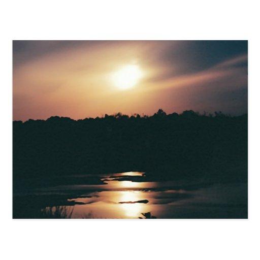 MIDNIGHT SUNSET postcard