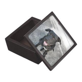Midnight the Black Lab Smiles Jewelry Box
