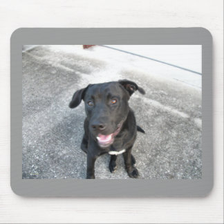 Midnight the Black Lab Smiles Mouse Pad