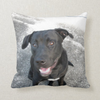 Midnight the Black Lab Smiles Pillows