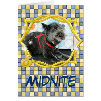 Midnite - Carin and Chow Mix Card