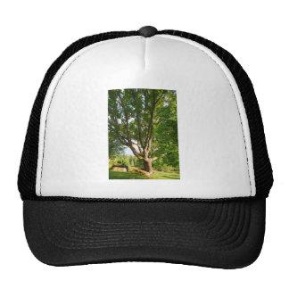 Midsummer Light Småland Trucker Hat