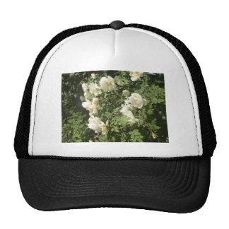Midsummer Roses Trucker Hat