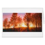 Midsummer Sunset Greeting Cards