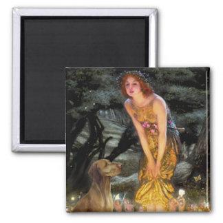 Midsummers Eve - Vizsla 1 2 Inch Square Magnet