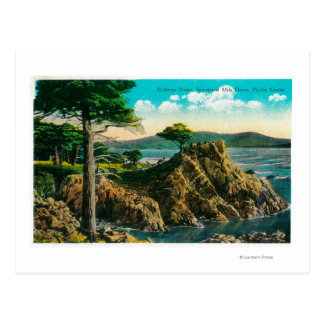 Midway Point on Seventeen Mile Drive Postcard