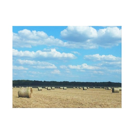 Midwest Farmer 2012 Drought Gallery Wrapped Canvas