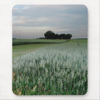 Midwest Farmland Wheat Field Mouse Pad