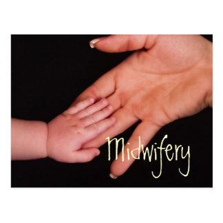 Midwifery Postcard