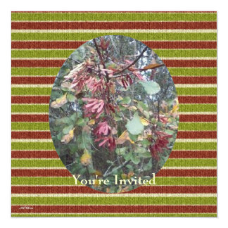 Midwinter Oak & Maple Botanical Birthday Stripes 5.25x5.25 Square Paper Invitation Card