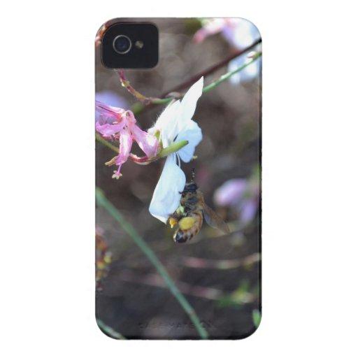 Miel de las naturalezas iPhone 4 Case-Mate cárcasas