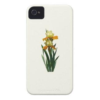 Miel del iris esmaltada iPhone 4 funda