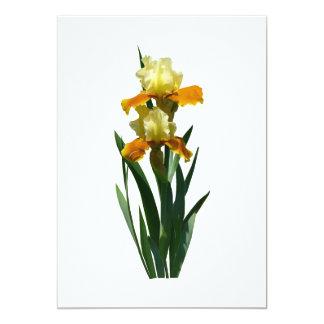 """Miel del iris esmaltada invitación 5"""" x 7"""""""