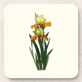 Miel del iris esmaltada posavasos de bebida