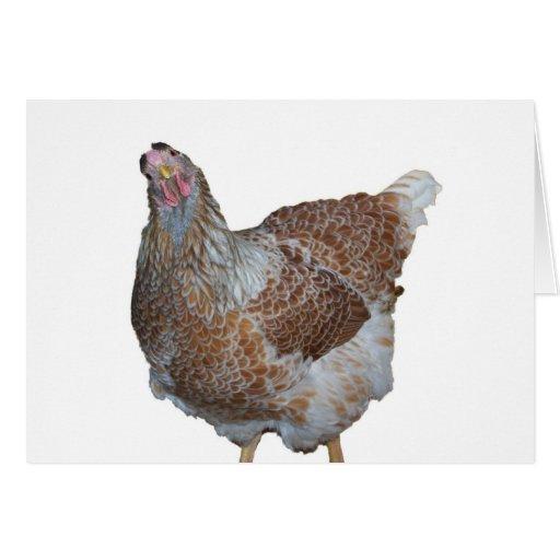Miel la gallina atada azul de Wyandotte Felicitacion