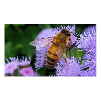 Miel para la venta tarjeta personal