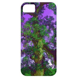 Miembro de árbol púrpura y verde iPhone 5 fundas