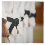 Miembros de un ir de discotecas del judo alineado azulejo ceramica