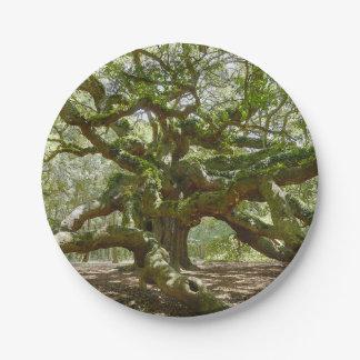 Mighty Angel Oak Paper Plate