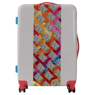 Mighty Color Luggage