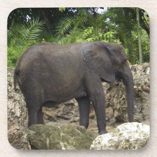 Mighty Elephant Drink Coaster