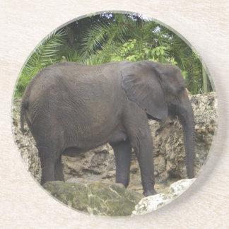 Mighty Elephant Sandstone Coaster
