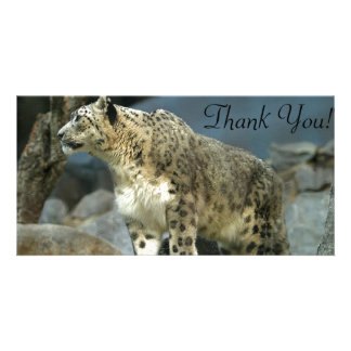 Mighty Leopard with Thick Fur and Huge Paws Custom Photo Card