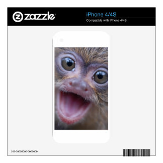 Mighty Marmoset iPhone Skin Skins For The iPhone 4S