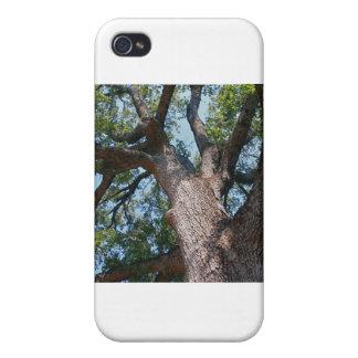 Mighty Oak iPhone 4 Case