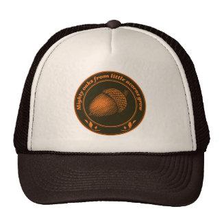Mighty oaks from little acorns grow trucker hat