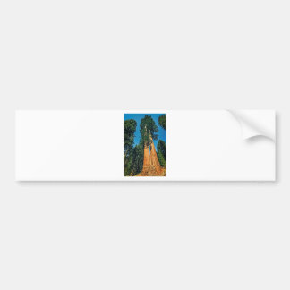 Mighty Redwood Bumper Sticker