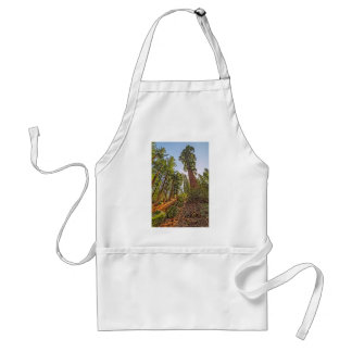 Mighty Sequoia Adult Apron