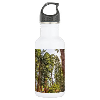 Mighty Sequoia Water Bottle