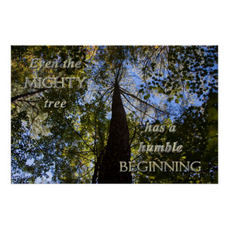 Mighty Tree Posters