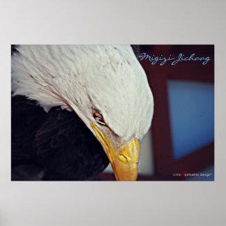 Migizi (Eagle calvo) es nuestro alcohol Póster