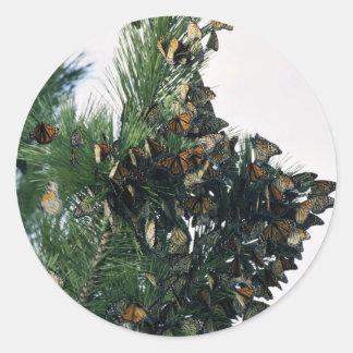 Migración del monarca pegatina redonda