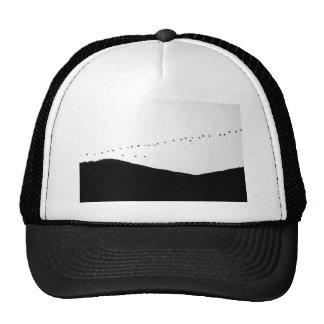 Migrating Birds Trucker Hat