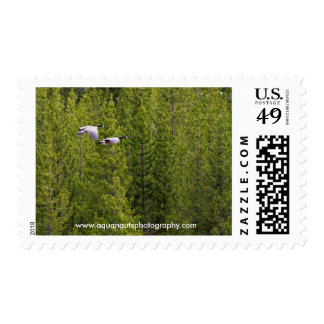 Migrating Geese Postage Stamps
