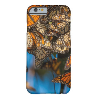 Migrating monarch butterflies cling to leaves barely there iPhone 6 case
