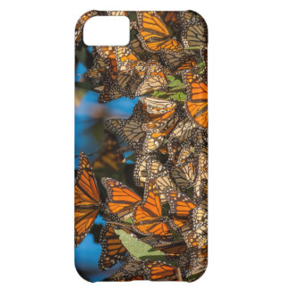Migrating monarch butterflies cling to leaves cover for iPhone 5C