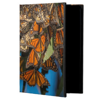 Migrating monarch butterflies cling to leaves iPad air case