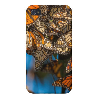 Migrating monarch butterflies cling to leaves iPhone 4 cover