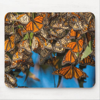 Migrating monarch butterflies cling to leaves mouse pad